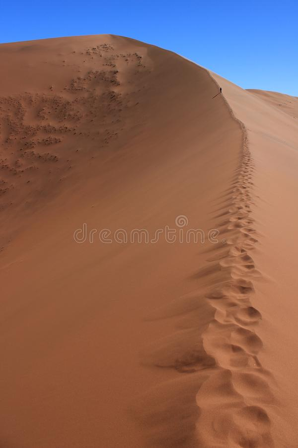Ένας αριθμός αφήνει τα ίχνη σε έναν γιγαντιαίο αμμόλοφο στην καρδιά Sossuvlei στοκ εικόνα