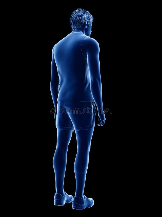 Ένας αρσενικός τύπος με το ύφασμα επάνω διανυσματική απεικόνιση