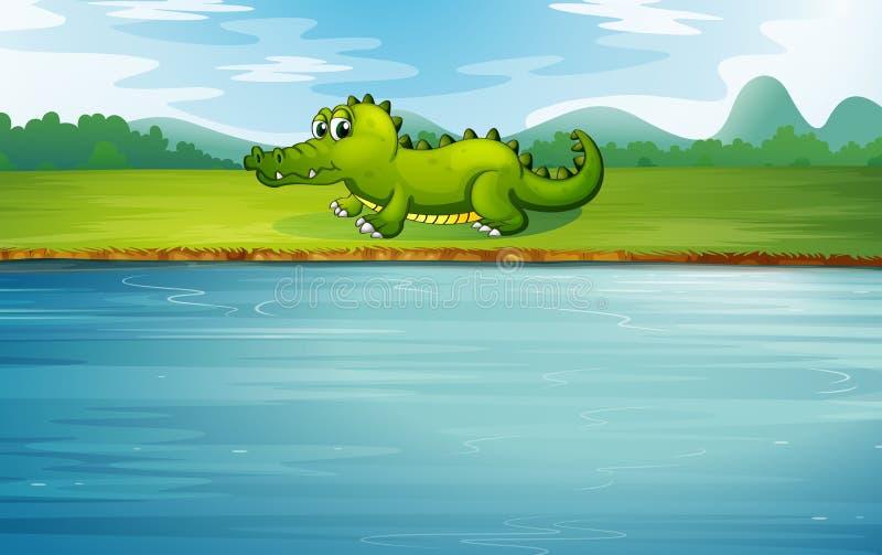 Ένας αλλιγάτορας στην όχθη ποταμού απεικόνιση αποθεμάτων