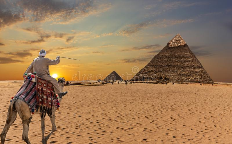Ένας βεδουίνος σε μια καμήλα μπροστά από τις μεγάλες πυραμίδες Giza στοκ εικόνες με δικαίωμα ελεύθερης χρήσης