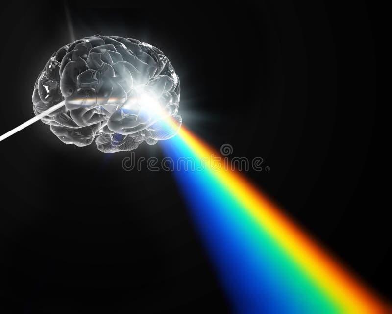 Ένας εγκέφαλος διαμόρφωσε το πρίσμα που διασκορπίζει το άσπρο φως ελεύθερη απεικόνιση δικαιώματος