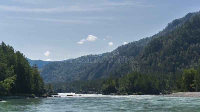 Ένας ευρύς ποταμός Katun ρέει στα βουνά στοκ εικόνες