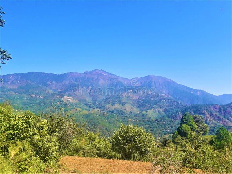 Ένας θαυμάσιοι μπλε ουρανός & ένα τοπίο με την πρασινάδα στοκ εικόνα με δικαίωμα ελεύθερης χρήσης