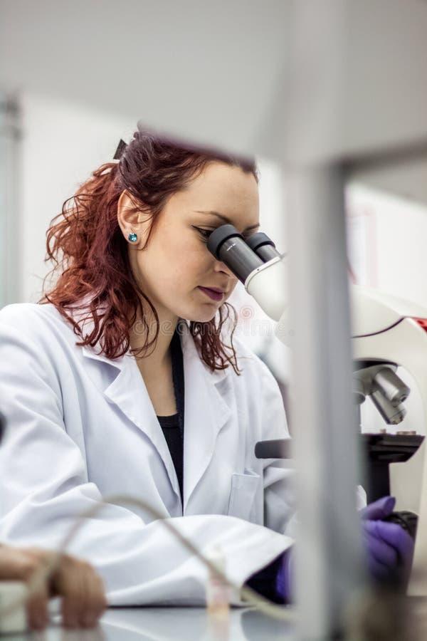 Ένας θηλυκός ιατρικός ή επιστημονικός γιατρός ερευνητών ή γυναικών lookin στοκ φωτογραφία με δικαίωμα ελεύθερης χρήσης
