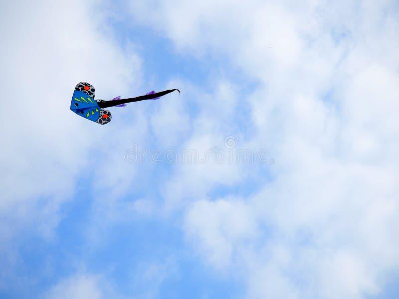 Ένας ικτίνος που πετά στον ουρανό στοκ φωτογραφία