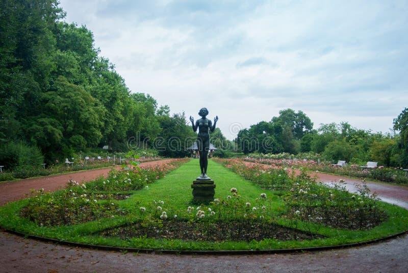 Ένας κήπος με τα τριαντάφυλλα και ένα γλυπτό ενός κοριτσιού τη νεφελώδη βροχερή ημέρα στη Δρέσδη, Γερμανία στοκ φωτογραφίες