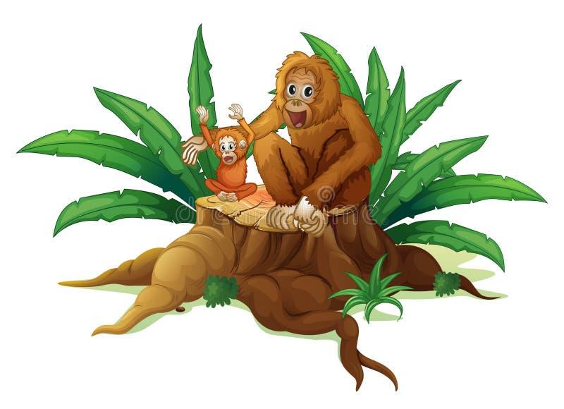 Ένας κορμός με μικρός και μεγάλος orangutan διανυσματική απεικόνιση