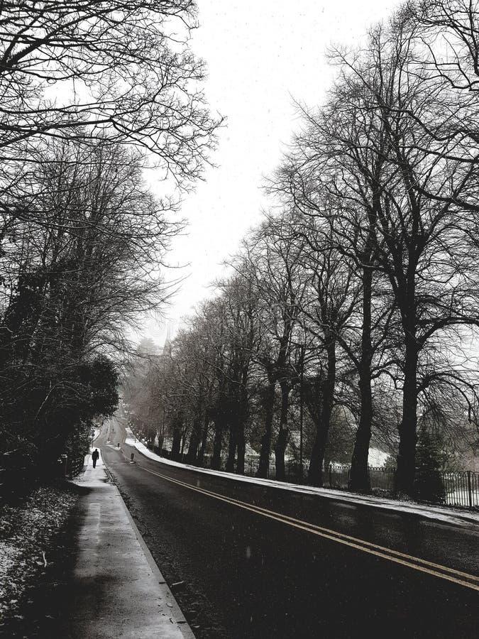 Ένας κρύος και μόνος χειμώνας στοκ φωτογραφία με δικαίωμα ελεύθερης χρήσης