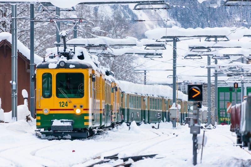Ένας κρύος πάγος της Ευρώπης τελεφερίκ χειμερινών τραίνων στοκ φωτογραφία με δικαίωμα ελεύθερης χρήσης