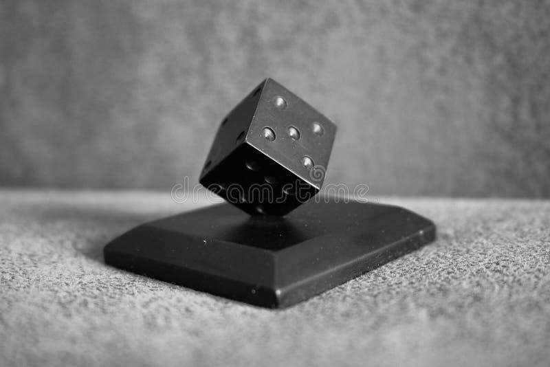 Ένας Μαύρος χωρίζει σε τετράγωνα! στοκ φωτογραφίες με δικαίωμα ελεύθερης χρήσης