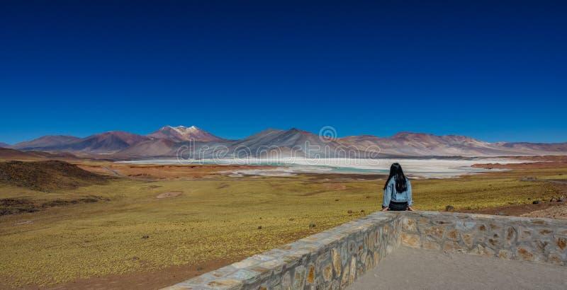 Ένας μη αναγνωρισμένος τουρίστας παρατηρεί τις κόκκινα πέτρες και Talar salar από την άποψη στοκ εικόνες