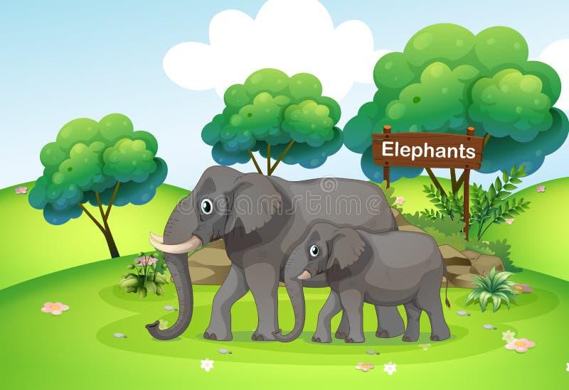 Ένας μικρός και μεγάλος ελέφαντας ελεύθερη απεικόνιση δικαιώματος