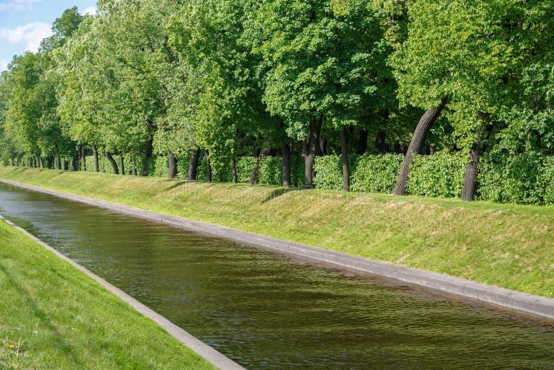 Ένας μικρός ποταμός διατρέχει ενός καναλιού στη μέση ενός πράσινου πάρκου για οικολογικά φιλικές διακοπές στοκ φωτογραφία με δικαίωμα ελεύθερης χρήσης