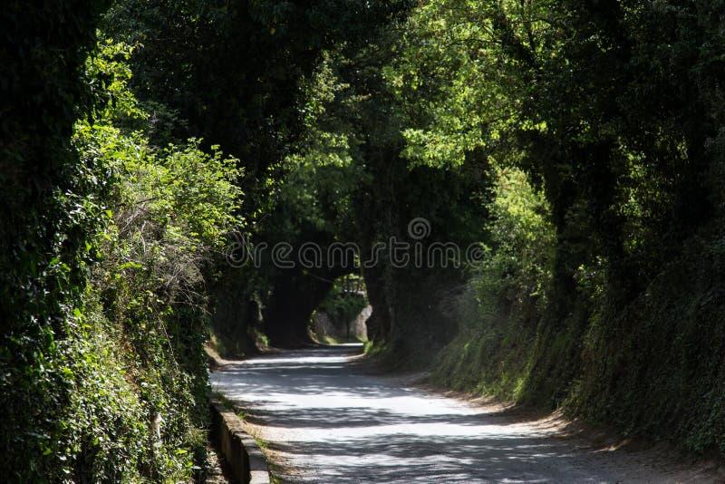 Ένας μυστικός δρόμος στοκ εικόνα με δικαίωμα ελεύθερης χρήσης