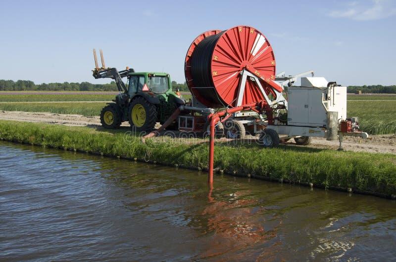 Ένας ολλανδικός αγρότης βολβών χρειάζεται την τεχνητή άρδευση στοκ εικόνες