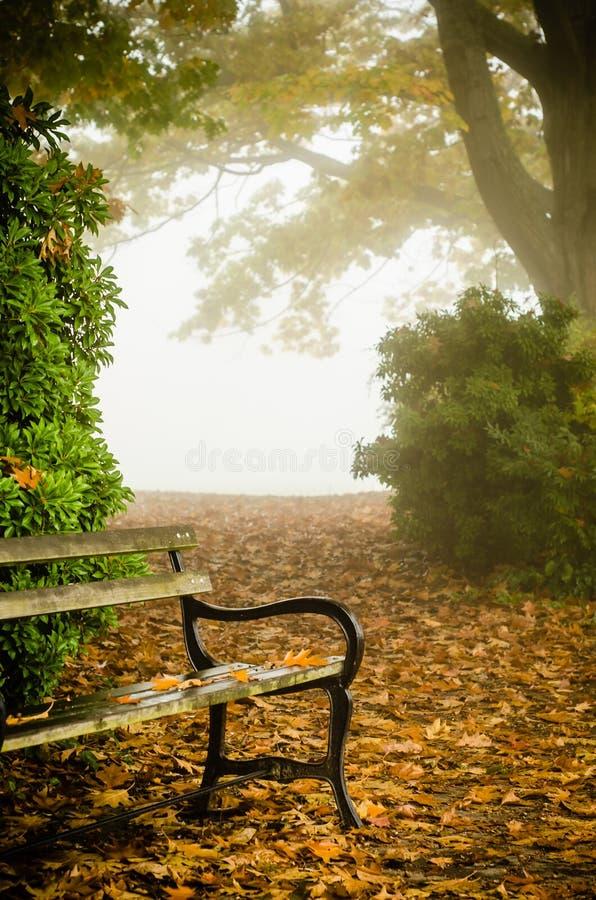 Ένας πάγκος στην ομίχλη στοκ φωτογραφία