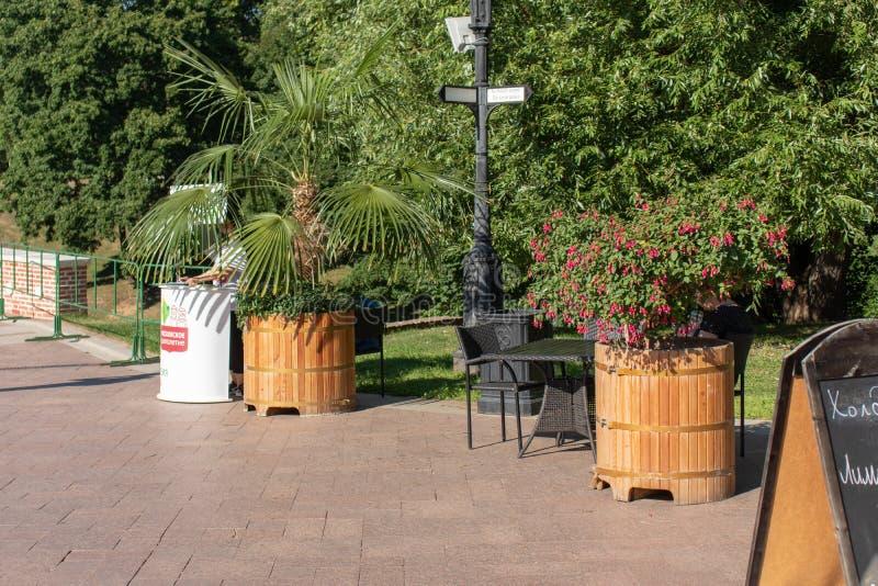 Ένας πίνακας με τις καρέκλες στην οδό Ξύλινες σκάφες με έναν φοίνικα και κόκκινα λουλούδια Μακρινές επιλογές στοκ εικόνες με δικαίωμα ελεύθερης χρήσης