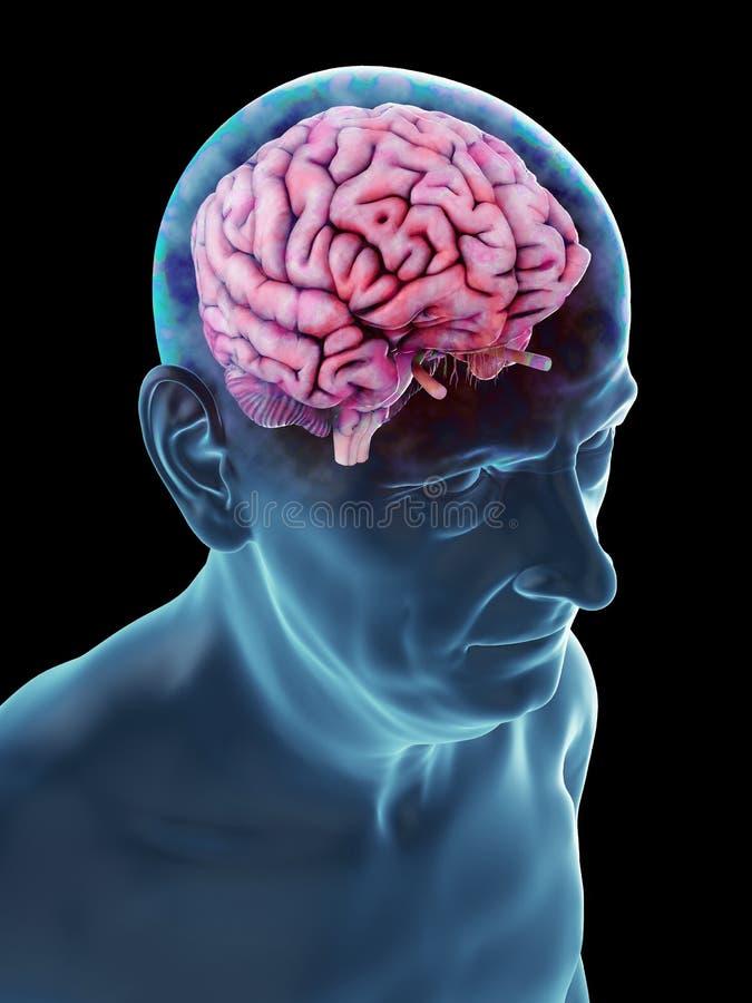 Ένας παλαιός επανδρώνει τον εγκέφαλο διανυσματική απεικόνιση