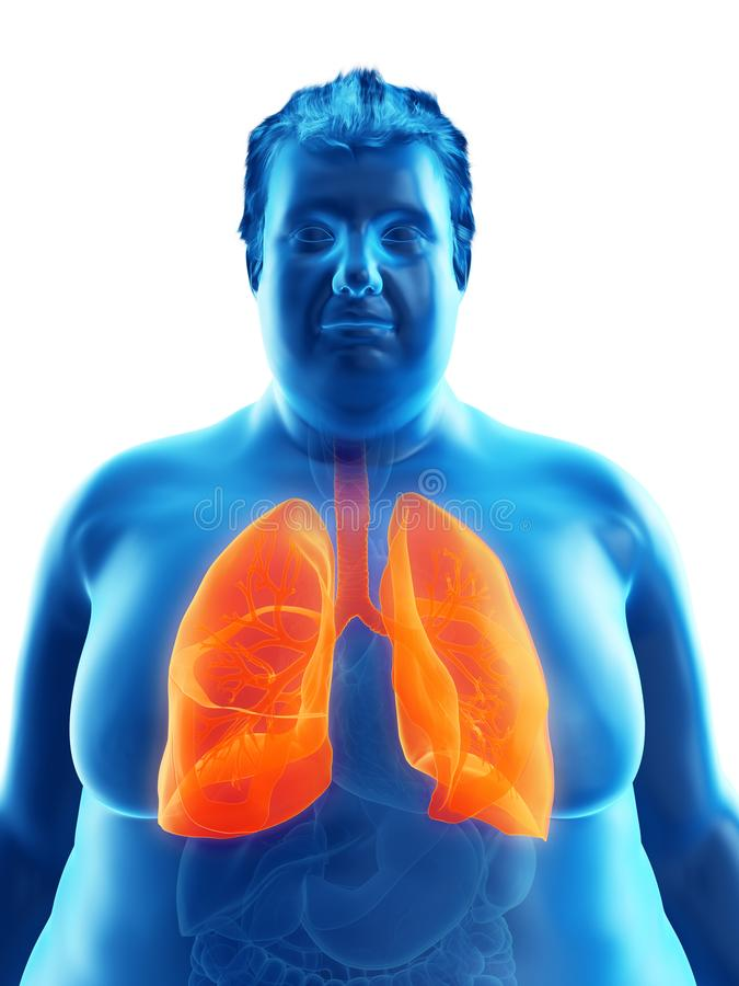 Ένας παχύσαρκος επανδρώνει τους πνεύμονες ελεύθερη απεικόνιση δικαιώματος
