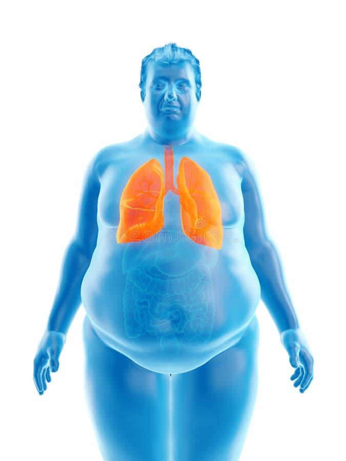 Ένας παχύσαρκος επανδρώνει τους πνεύμονες διανυσματική απεικόνιση