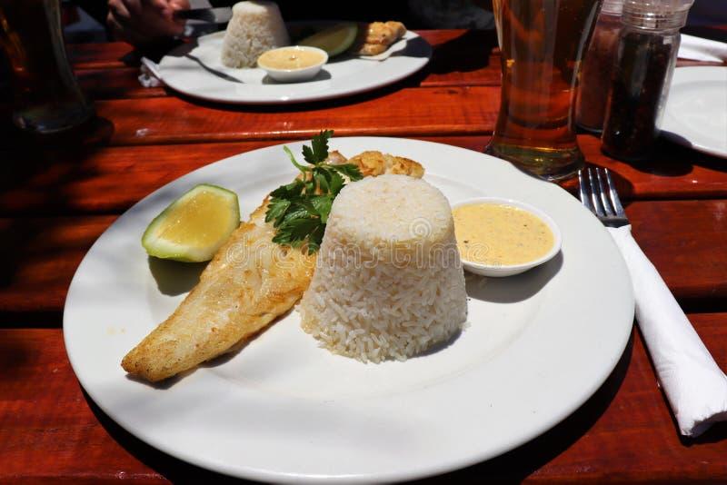 Ένας πολύ καλός μπακαλιάρος για το μεσημεριανό γεύμα στοκ εικόνες
