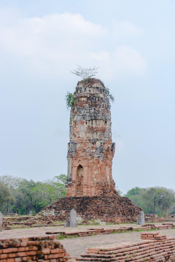 Ένας πύργος ναών στοκ φωτογραφία με δικαίωμα ελεύθερης χρήσης