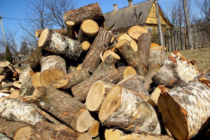 Ένας σωρός του τεμαχισμένου ξύλου Πριονισμένο δέντρο Αγκίδα στοκ εικόνες