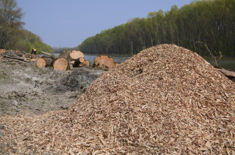 Ένας σωρός των ξύλινων τσιπ στοκ φωτογραφία με δικαίωμα ελεύθερης χρήσης