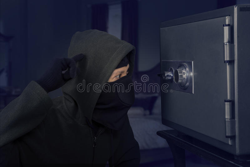 Ένας ταραγμένος ληστής στοκ φωτογραφία με δικαίωμα ελεύθερης χρήσης