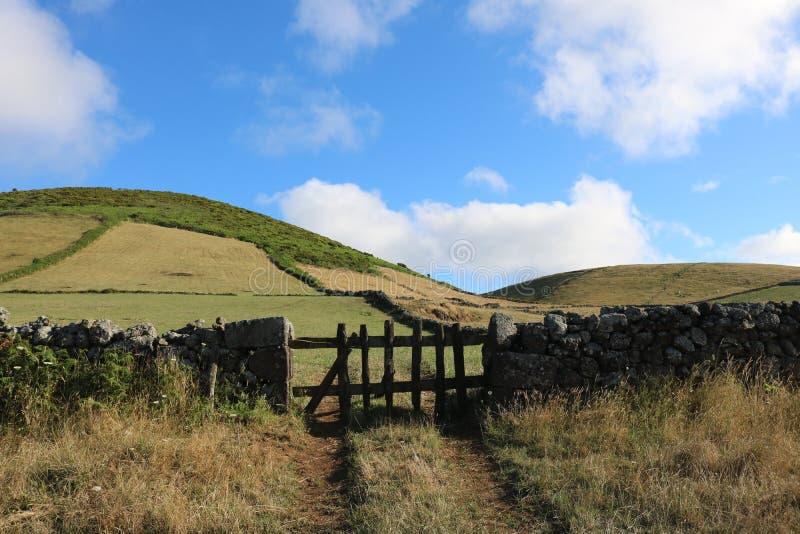 Ένας τοίχος πετρών με μια παλαιά ξύλινη πύλη στοκ εικόνα με δικαίωμα ελεύθερης χρήσης