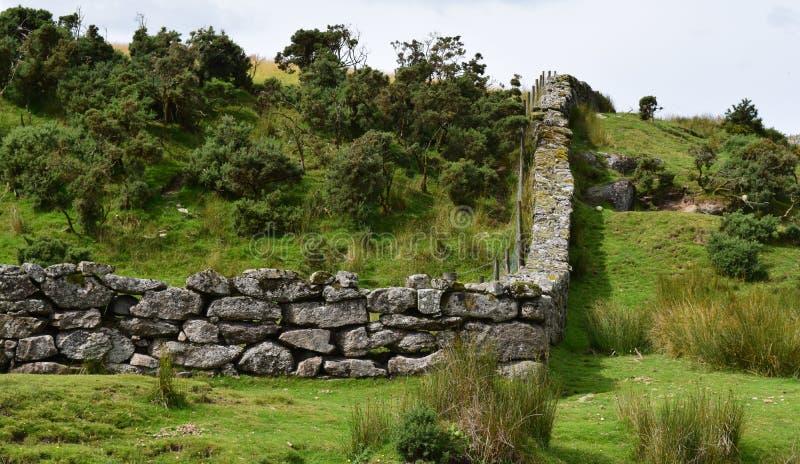 Ένας τοίχος που τρέχει κατά μήκος της μέσης Exmoor στοκ εικόνα με δικαίωμα ελεύθερης χρήσης