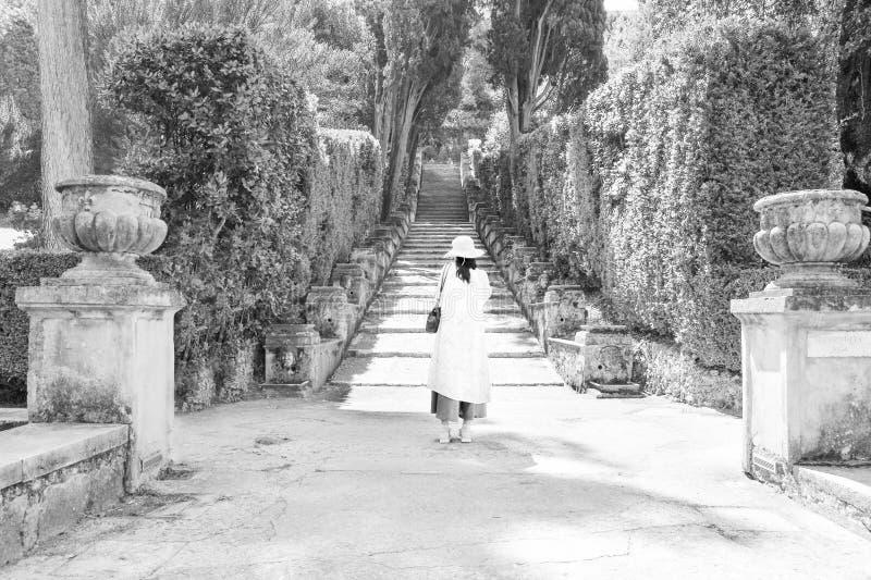 Ένας τουρίστας που παίρνει μια εικόνα στη βίλα δ Este στοκ εικόνα με δικαίωμα ελεύθερης χρήσης
