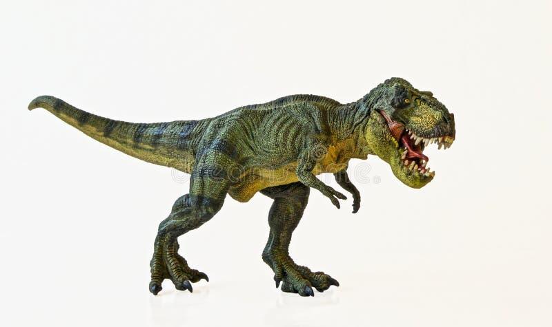 Ένας τυραννόσαυρος κυνηγά σε μια άσπρη ανασκόπηση στοκ φωτογραφίες