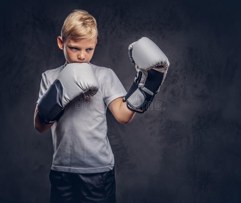 Ένας όμορφος μπόξερ μικρών παιδιών με την ξανθή τρίχα έντυσε σε μια άσπρη μπλούζα στα γάντια έτοιμα να παλεψουν Απομονωμένος σε έ στοκ φωτογραφίες με δικαίωμα ελεύθερης χρήσης