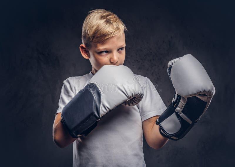 Ένας όμορφος μπόξερ μικρών παιδιών με την ξανθή τρίχα έντυσε σε μια άσπρη μπλούζα στα γάντια έτοιμα να παλεψουν Απομονωμένος σε έ στοκ φωτογραφία με δικαίωμα ελεύθερης χρήσης