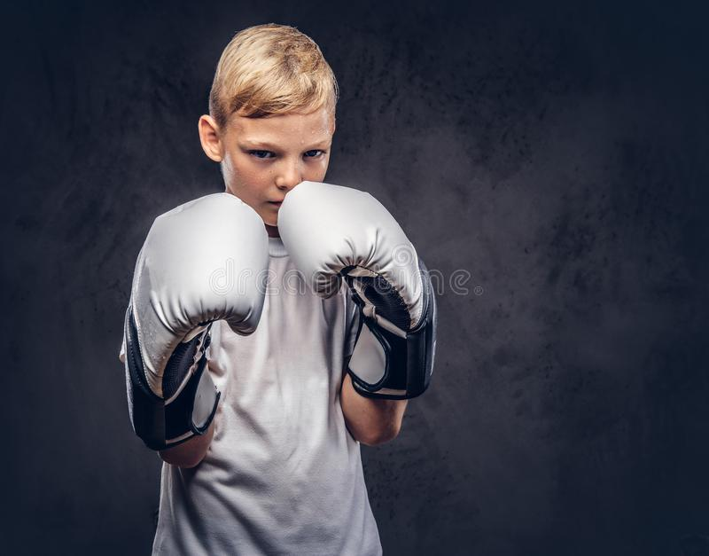 Ένας όμορφος μπόξερ μικρών παιδιών με την ξανθή τρίχα έντυσε σε μια άσπρη μπλούζα στα γάντια έτοιμα να παλεψουν Απομονωμένος σε έ στοκ εικόνα με δικαίωμα ελεύθερης χρήσης