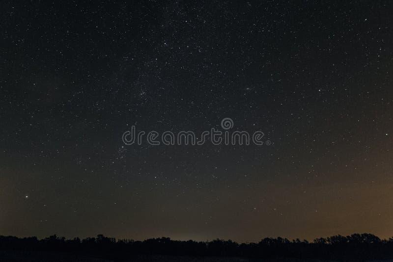 Έναστρη νύχτα πέρα από τον ορίζοντα με τα δέντρα στοκ φωτογραφίες