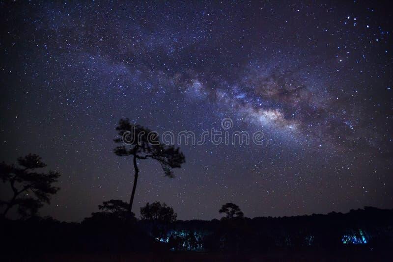 Έναστρος νυχτερινός ουρανός και γαλακτώδης γαλαξίας τρόπων με τα αστέρια και τη διαστημική σκόνη στοκ εικόνα με δικαίωμα ελεύθερης χρήσης