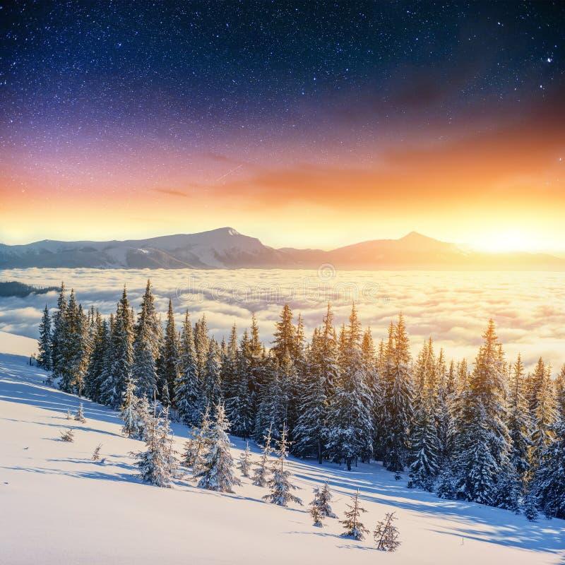 Έναστρος ουρανός στη χειμερινή χιονώδη νύχτα Φανταστικός γαλακτώδης τρόπος στοκ εικόνα με δικαίωμα ελεύθερης χρήσης