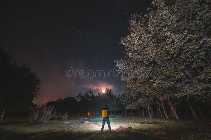 έναστρος ουρανός, φωτογραφία νύχτας, η σκιαγραφία ενός ατόμου που στέκεται δίπλα σε ένα πράσινο λιβάδι με κίτρινο δασικών δέντρων στοκ φωτογραφία με δικαίωμα ελεύθερης χρήσης