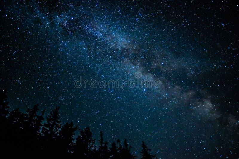 Έναστρος ουρανός Carpathians στοκ εικόνα με δικαίωμα ελεύθερης χρήσης