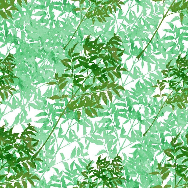 Ένα άνευ ραφής σχέδιο της ζούγκλας, στο watercolor, διακλαδίζεται με τα φύλλα από κοινού Χέρι που βάφεται ελεύθερη απεικόνιση δικαιώματος