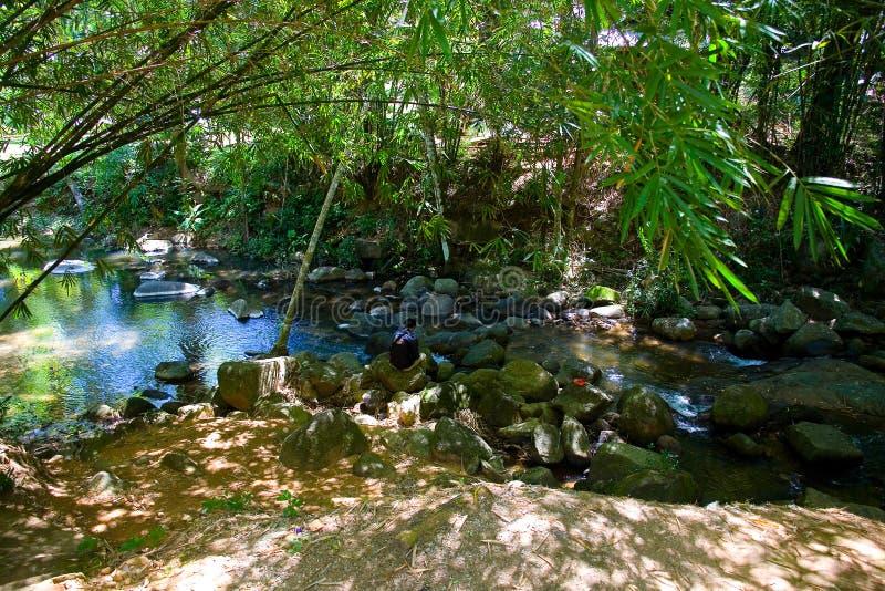 Ένα άτομο κάθεται στους βράχους σε μια γραφική θέση από έναν ποταμό βουνών στοκ εικόνες
