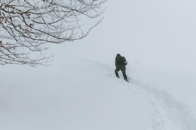 Ένα άτομο περνά από μια θύελλα χιονιού στοκ φωτογραφίες με δικαίωμα ελεύθερης χρήσης