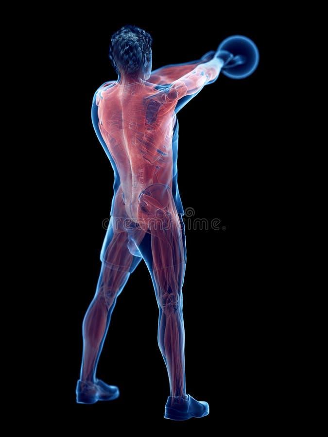 Ένα άτομο που κάνει ένα kettlebell workout διανυσματική απεικόνιση
