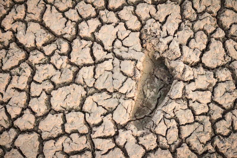 Ένα ίχνος του ανθρώπου στην ξηρά ξηρασία εδαφολογικής αιτίας ρωγμών στοκ εικόνες