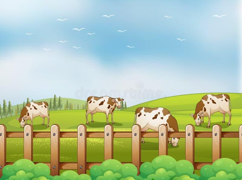 Ένα αγρόκτημα με τις αγελάδες διανυσματική απεικόνιση