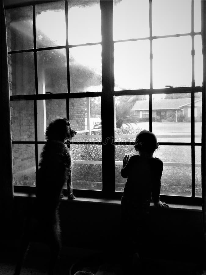 Ένα αγόρι και το σκυλί του φαίνονται έξω το παράθυρο διανυσματική απεικόνιση