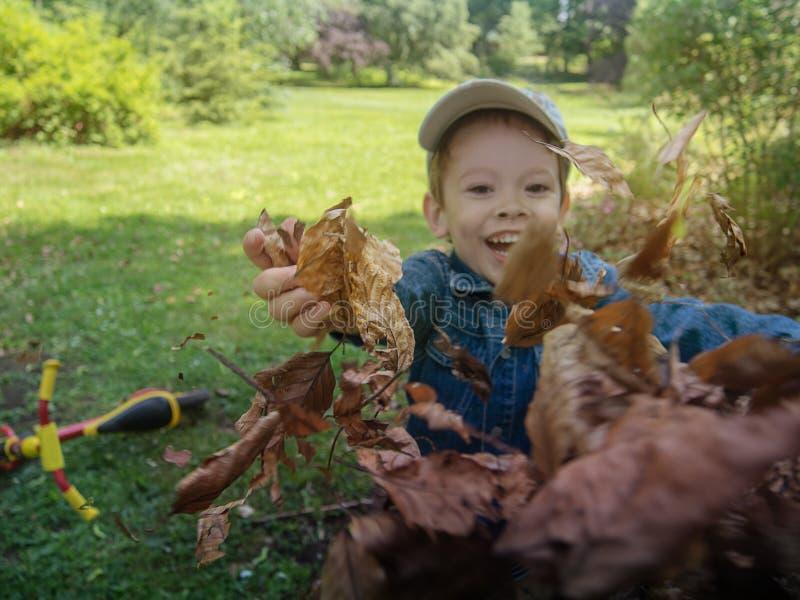 Ένα αγόρι που πετά πέρυσι τα ξηρά καφετιά φύλλα ` s στοκ εικόνα με δικαίωμα ελεύθερης χρήσης