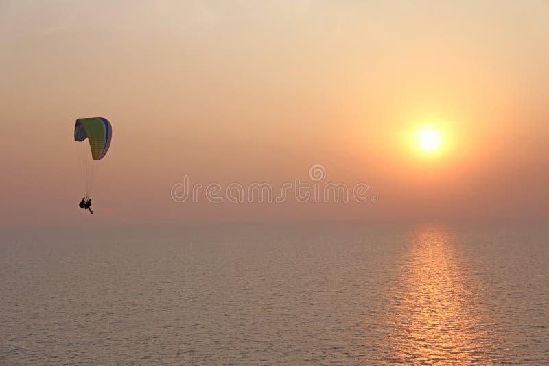 Ένα ανεμόπτερο στα πλαίσια της θάλασσας και του ηλιοβασιλέματος ή daw στοκ εικόνα